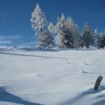 sneeuw-omgeving